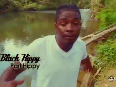 Black Hippy- Part Hippy Follow BLACK HIPPY https://www.facebook.com/lindsay.b.haulze